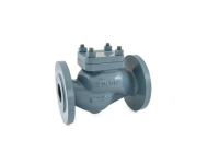 Zoloto 1067 - 80 mm Cast Iron Flanged Horizontal Lift Straight Pattern Check Valve