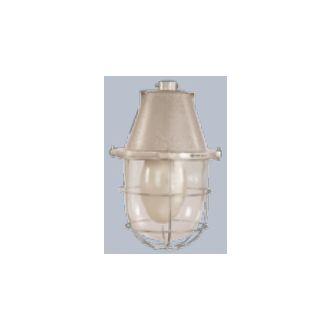 Buy Bajaj Bjvw 300 300w Gls Non Integral Wellglass Light