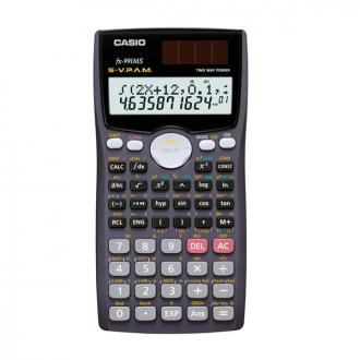 Casio 991MS - 12 Digit Scientific Calculator